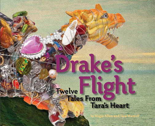 Drakes Flight Book